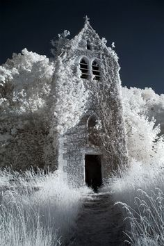 Cool infrared photography. Thanks to that kid @Chris Cote Brogan for sharing. ^z1