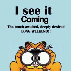 Garfield with binoculars - long weekend coming