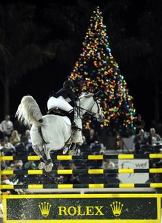 Margie Engle, winner of the Rolex/U.S. Equestrian Federation National Championship at Holiday & Horses.