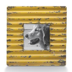 Showcase a favorite photo with this metal frame. A distressed finish and corrugated texture give this frame gentle vintage appeal, perfect for displaying a black-and-white or sepia-tinted picture. Sha