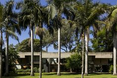 House between Trees / - = + x -