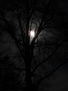 I am in love with the moon...among other things... ; )