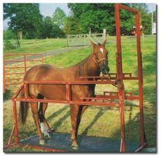How To Build Horseshoeing Stocks Equine Stocks Horse