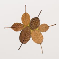Esculturas con hojas secas tejidas entre si.