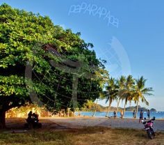 Detalles de Playa Garza. Costa Rica.