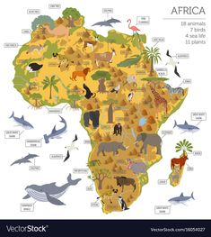 Flat Africa flora and fauna map constructor elements. Animals, b African Culture, African History, Zoo Map, South America Map, Pictorial Maps, Whale Tattoos, Kids Around The World, Flora And Fauna, Illustrations