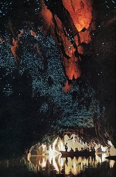 Waitomo Glow Worm caves,North Island, New Zealand - most amazing adventure ever! New Zealand Adventure, New Zealand Travel, Tumblr Wallpaper, Lock Screen Wallpaper, The Places Youll Go, Places To See, Time Travel, Places To Travel, Glow Worm Cave