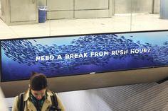 Monterey Bay Aquarium: Share the Love—BART Station Domination, 5