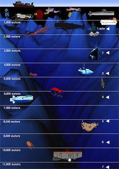 sea depth chart