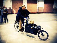 DOUZE-Cycles Cargobikes