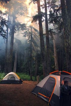 Camping in the Pacific Northwest. Photo by NaturePunk.
