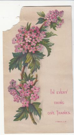 In Every Thing Give Thanks Pink Flowers Religious Victorian Card C 1880s | eBay