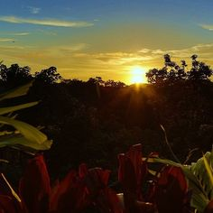 Sunsets never get old in Costa Rica! #costarica #sunset