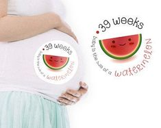 Pregnancy Stickers Belly Stickers Baby Bump Weekly   Etsy 28 Weeks Pregnant Belly, Baby Stickers, Printable Planner Stickers, Baby Bumps, Baby Month By Month, Sticker Paper, Pregnancy, Tropical, Etsy