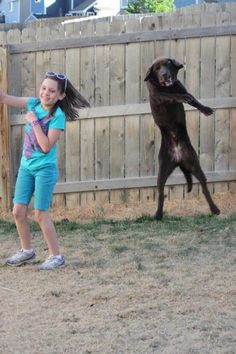 """""""Synchronized backyard dancing"""" - brought to you by Black Dog Animal Rescue and Pete!"""