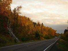 Superior National Forest Img: Fall Colors along Hwy 61