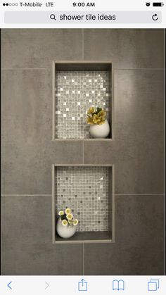 Cutouts in shower like this but longer for soaps