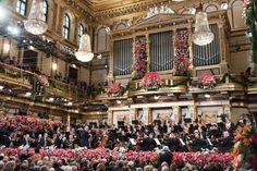 Concierto Año Nuevo en Viena http://www.rtve.es/rtve/20151229/rtve-comienza-ano-nuevo-tradicional-concierto-orquesta-filarmonica-viena/1278900.shtml