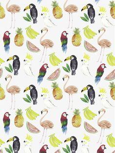 Imagen de background, wallpaper, and bird