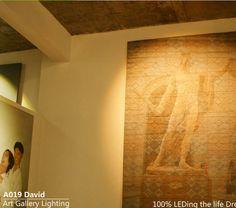 A019 David LED Gallery Lighting