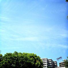 el cielo está despejado...