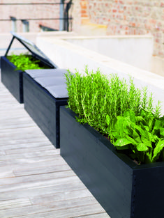 Build stylish flower boxes with a tacker - Diy Garden Box Ideas Plants For Raised Beds, Raised Garden Beds, Garden Seating, Garden Boxes, Flower Boxes, Backyard Landscaping, Landscaping Ideas, Garden Inspiration, Outdoor Gardens