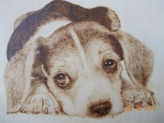 Wood-Burning Art Gallery | Sketch Of A Sad Puppy Sad puppy - wood burning