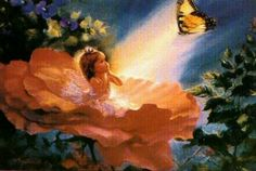 FAIRYTALES AND BUTTERFLIES | and butterflies