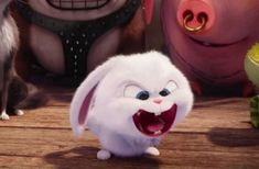 Snowball the rabbit is fluffy white dynamite. The Secret