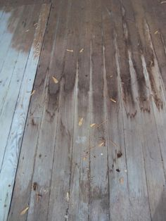 Back porch:  cupping is terrible thing when it comes to flooring.  Have I mentioned I hate water.