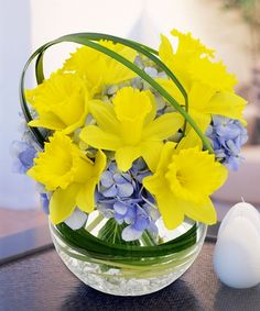Daffadile Bowl - Griffins Floral Deisgn - Columbus Flowers - Columbus Florist - Same Day Flower Delivery Columbus Ohio