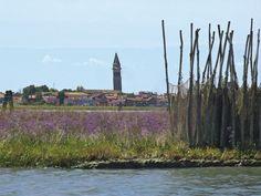 In bragozzo nella Laguna di Venezia