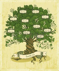 family tree: Genealogical tree on old paper background. Family tree in vintage style. Pedigree