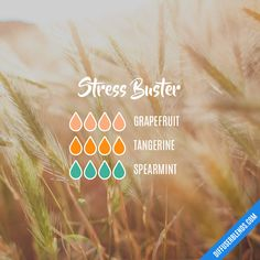 Stress Buster — Essential Oil Diffuser Blend
