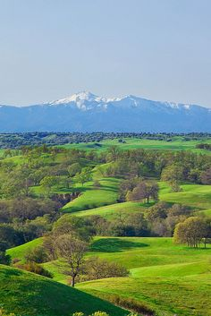 Inner Coast Ranges and Hills by Anthony Dunn