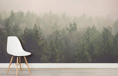 amidst-the-mist-forest-room