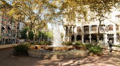 Paseo de Gracia en otoño, en Casa Fuster, els jardinets, #barcelona  #events  #autumn  #terrace  #kitchen #cooking  #cocina  #dinners