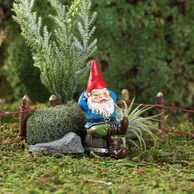 RUFUS THE NAPPING GNOME