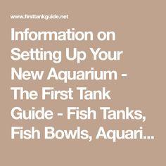 Information on Setting Up Your New Aquarium - The First Tank Guide - Fish Tanks, Fish Bowls, Aquariums, Aquarium Filters, Aquarium Heaters, Choosing Fish, Aquarium Information #AquariumFilterIdeas