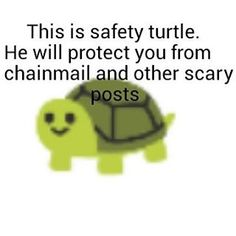 Safety turtle protects you from chain mail. #safetykitty #safetyturtle