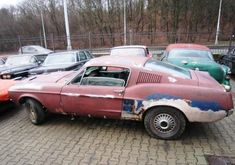 1967 Mustang Fastback Project Car for Sale, Wrecked Trucks for Sale in Texas - Trucks Image Gallery Ford Mustang Shelby Gt500, 1970 Ford Mustang, Big Girl Toys, Girls Toys, Project Cars For Sale, Mustang For Sale, Custom Muscle Cars, Trucks For Sale, Mustangs