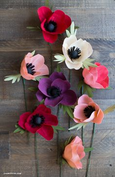 Make these Amazing Anemone Crepe Paper Flowers to decorate your home this summer. You can also make a bouquet of these DIY paper flowers for your favorite woman or women in your life. The texture of these crepe paper crafts can't be beaten. How To Make Paper Flowers, Tissue Paper Flowers, Felt Flowers, Diy Flowers, Flower Paper, Flower Oil, Crepe Paper Crafts, Diy Paper, Papier Diy