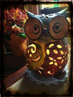Owl LOVE♡