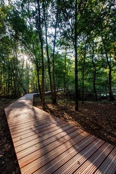 ww1-landscape-memorial-forest-path-Ypres-Belgium-omgeving-landscape-architecture-15 « Landscape Architecture Works | Landezine