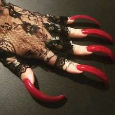 Long Red Nails, Long Fingernails, Sexy Nails, Stiletto Nails, Perfect Nails, Gorgeous Nails, Woman With Longest Nails, Long Natural Nails, Curved Nails