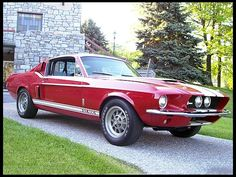 1967  Shelby GT500  Sold New at Tasca Ford