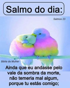 New Years Eve Party, Blessed, Lord, Faith, Humor, My Love, Quotes, Portuguese, Wise Words