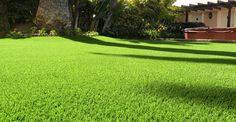 Désodorisant et protecteur pour gazon synthétique. #gazonsynthetique Plus d'information : http://www.gazonsynthetiqueiag.fr