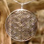 It is considered by some to be a symbol of sacred geometry, said to contain ancient, religious value depicting the fundamental forms of space and time. In this sense, it is a visual expression of the connections life weaves through all sentient beings, believed to contain a type of Akashic Record of basic information of all living things. http://www.crystalinks.com/floweroflife.html