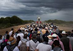 Pilgrims walk behind the carriage carrying the Simpecado of the Hermandad del Rocio de Huelva during their journey to La Ermita del Rocio. The Romeria del Rocio procession brings together roughly a million pilgrims each year
